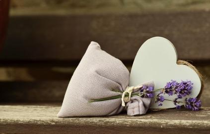 lavender-823600_1280